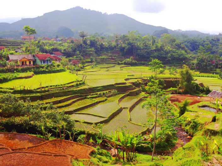 Travel photography Java